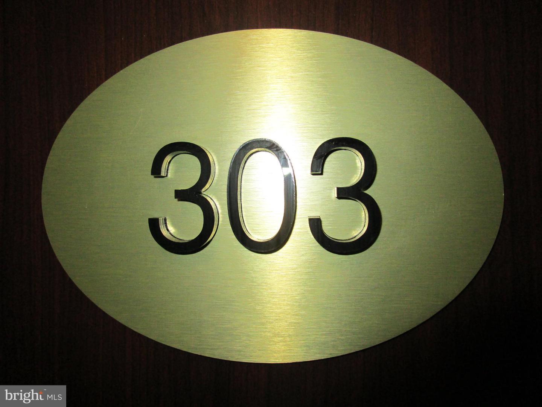 1001 City Avenue #EC303 Wynnewood, PA 19096