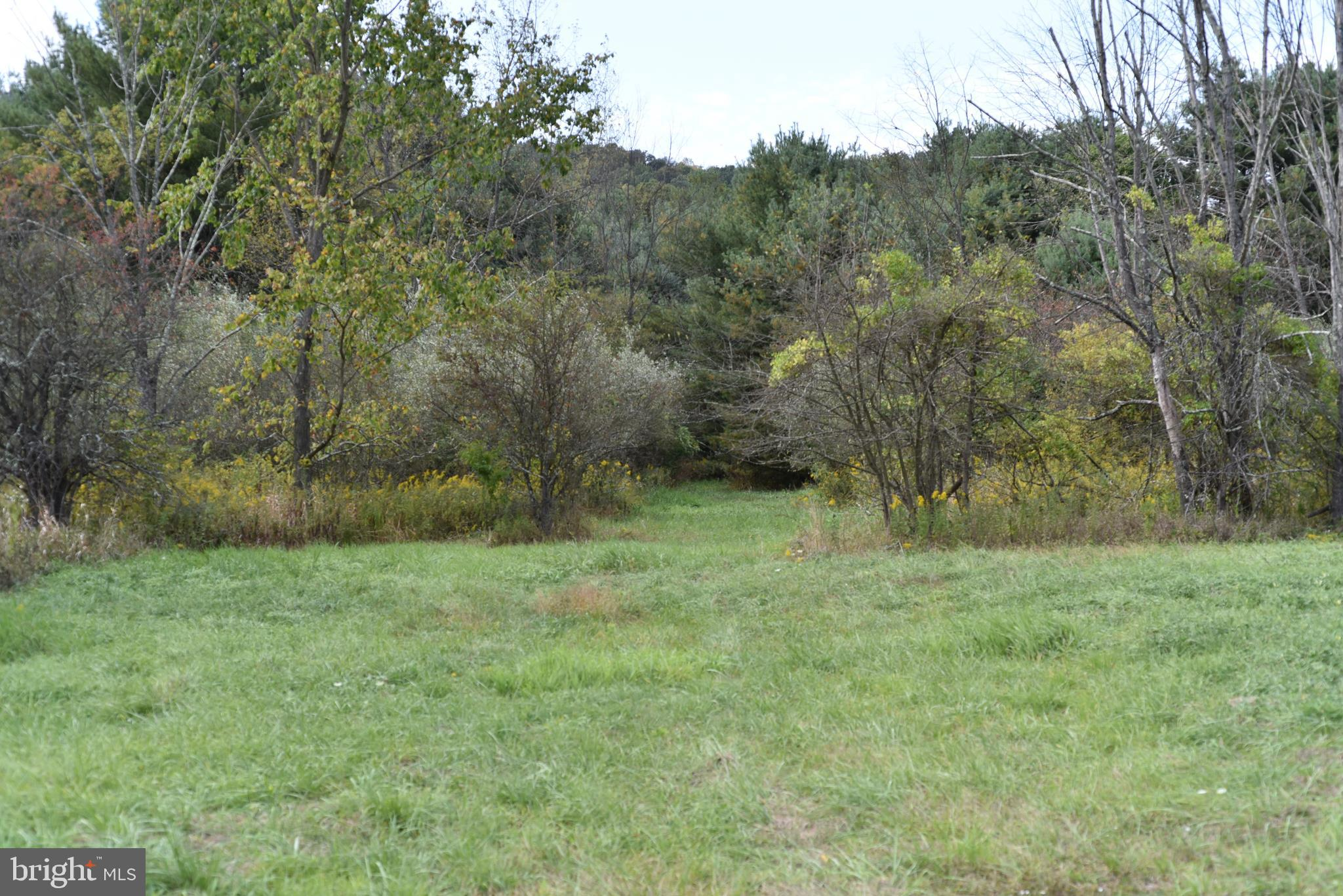 Lot # 2 GREAT COVE ROAD, MCCONNELLSBURG, PA 17233