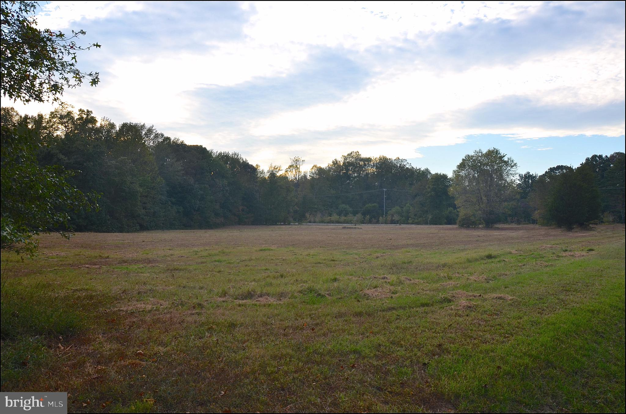 4 Acres in Edgewater,  Parcel 254, Beautiful flat lot, mostly cleared and bordered by trees.   Wet season perc completed in 2019 for 3500+ SF house.  Blue Ribbon schools.   Bring your own builder or we can recommend one for you.   Buyer responsible for determining lot lines, any possible easements, critical area or any county building requirements.   No HOA restrictions.