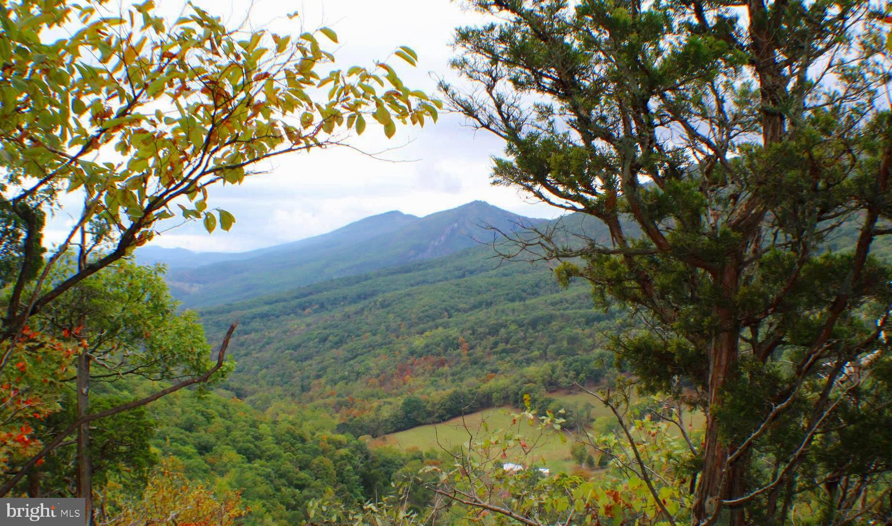 1050 LITTLE MOUNTAIN ROAD, CABINS, WV 26855
