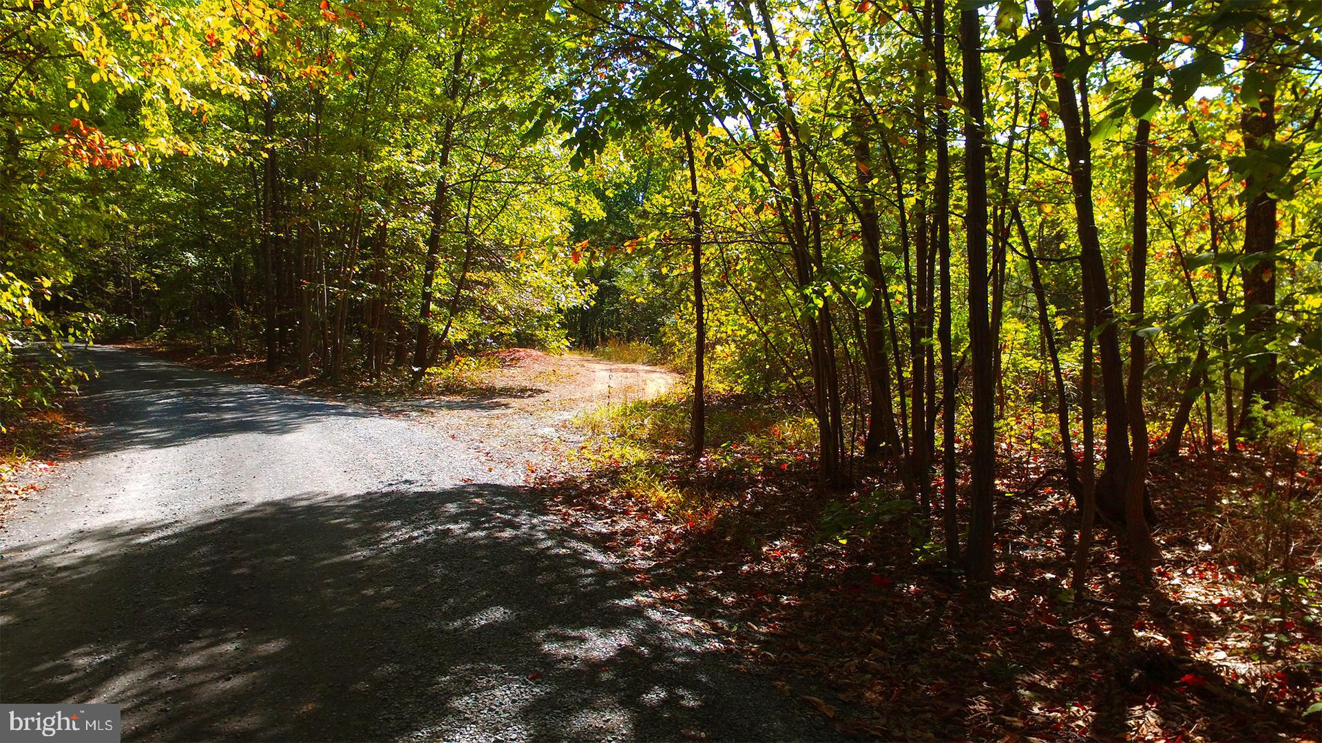 BUSHY RIDGE - LOT 1-A DRIVE, STAR TANNERY, VA 22654