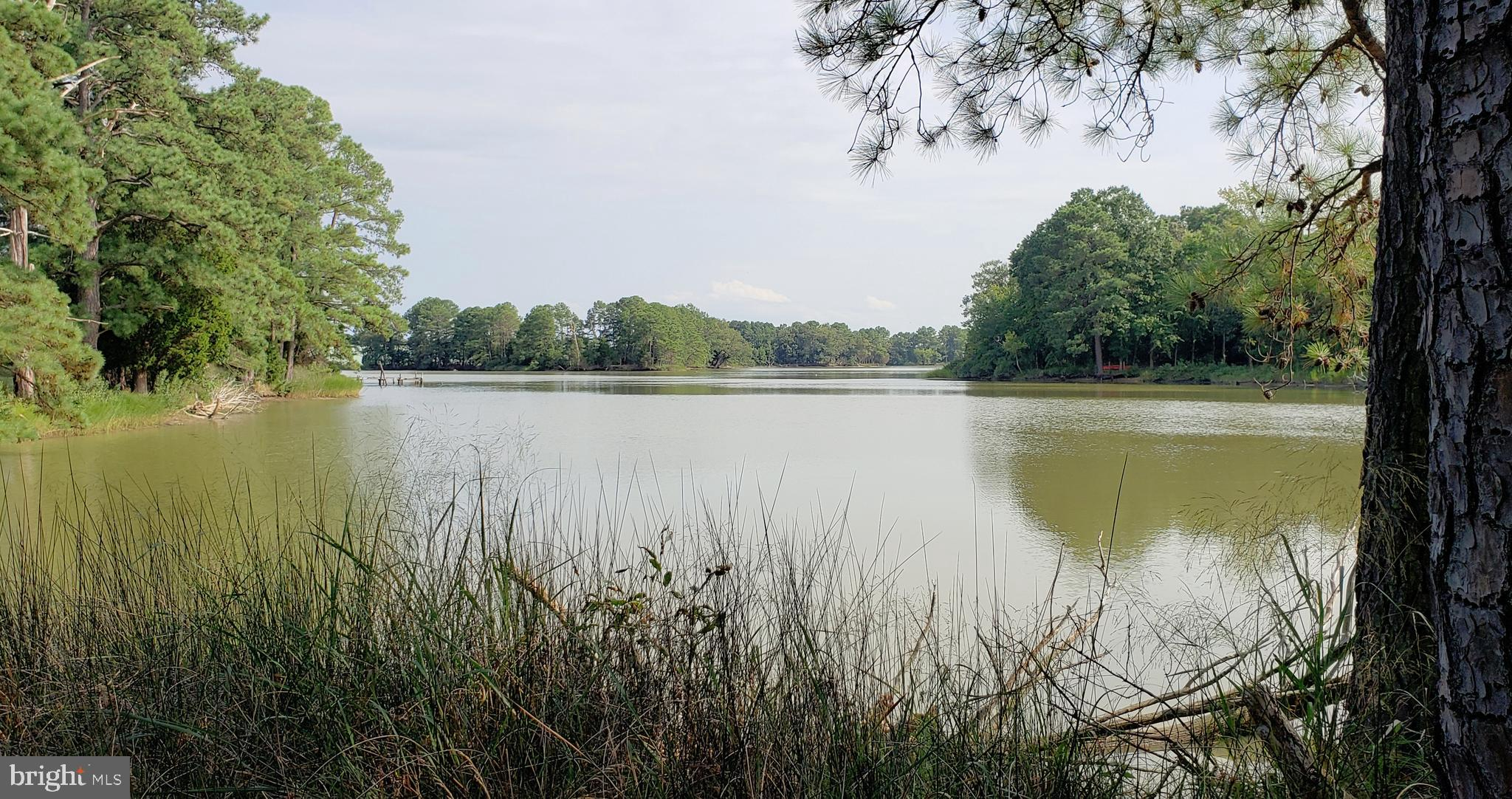 Lot 94 and 95 DRIFTWOOD, TALL TIMBERS, MD 20690