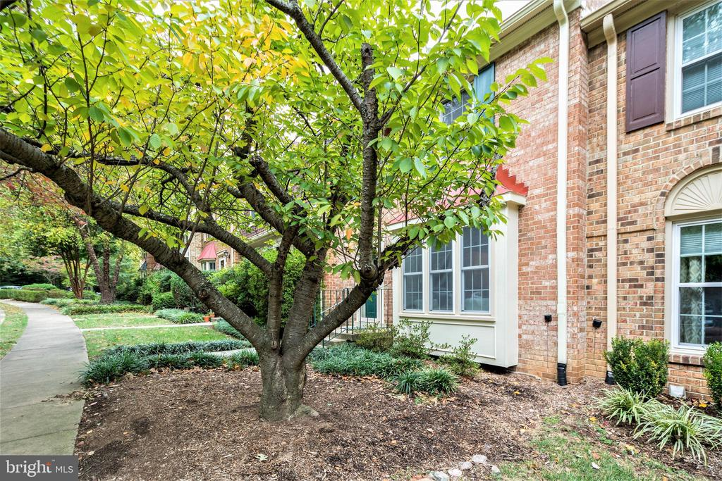 Photo of 4625 Briar Patch Ct