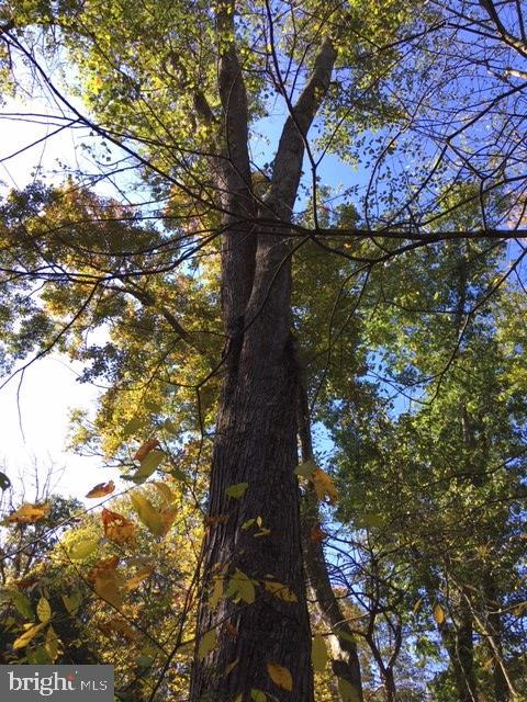 Pine Mountain Road, Lock Haven, PA 17745