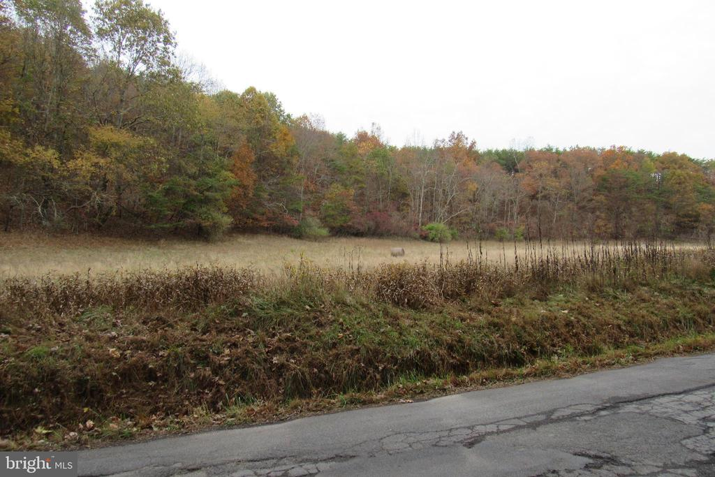 Nice building site along a state maintained road with existing electric hookup. Plenty of space to build a home or hunting cabin on this 13+ acre lot. A must see!