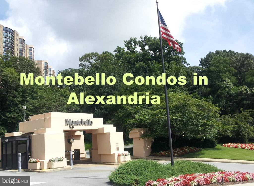 Alexandria Homes for Sale -  Canal View,  5904  MOUNT EAGLE DRIVE  1517A (1517&1518)