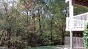9288-D Cardinal Forest Ln #302