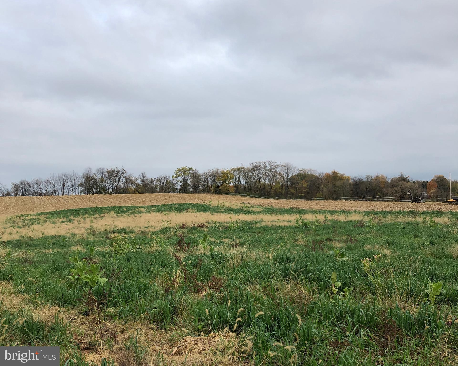 LANCASTER PIKE LOT 2, NEW PROVIDENCE, PA 17560
