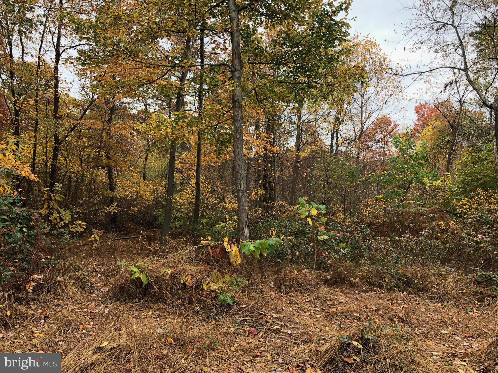 LANCASTER PIKE LOT 4, NEW PROVIDENCE, PA 17560
