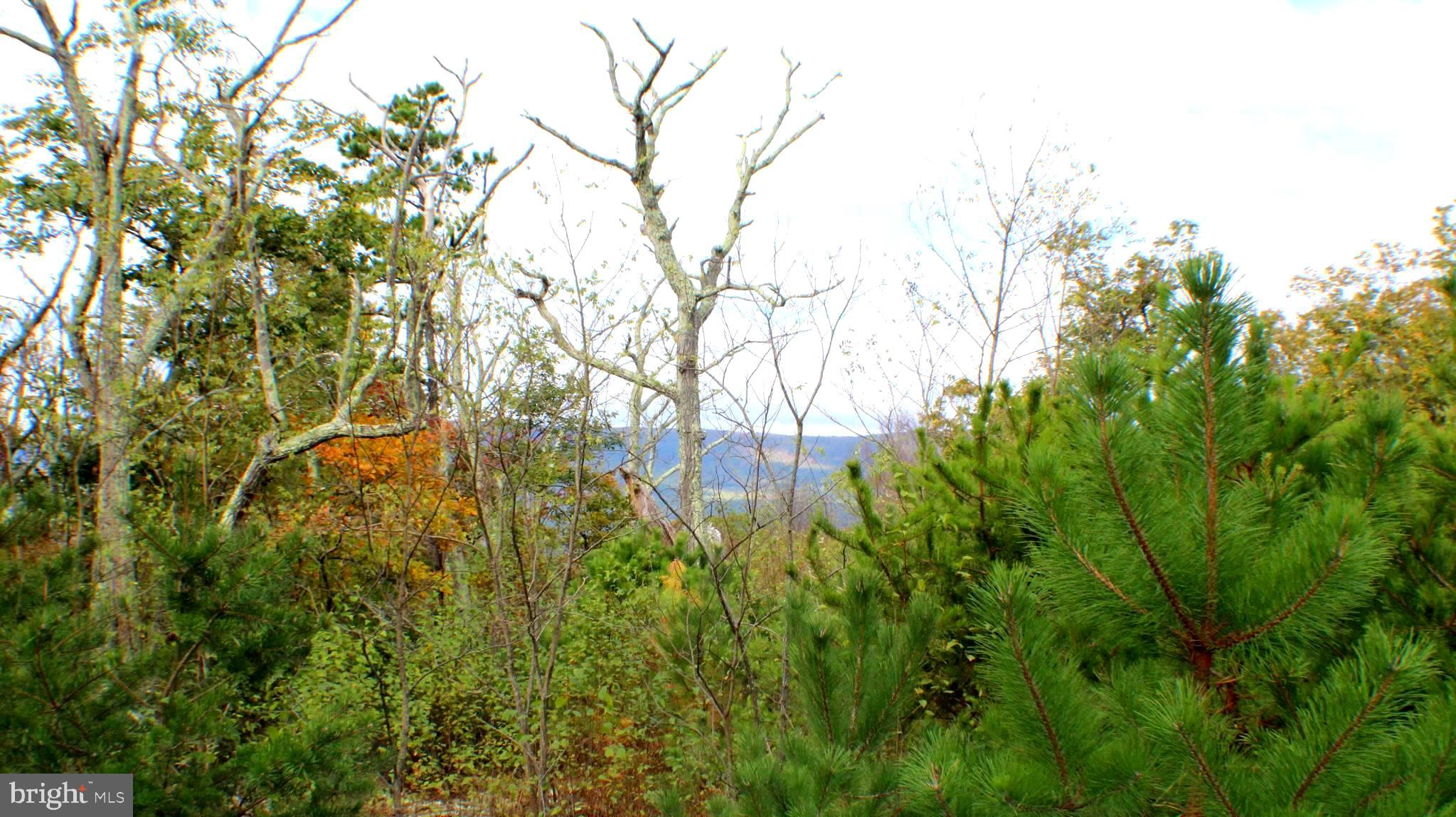 Lots 33-38 Panther Road, Maysville, WV 26833