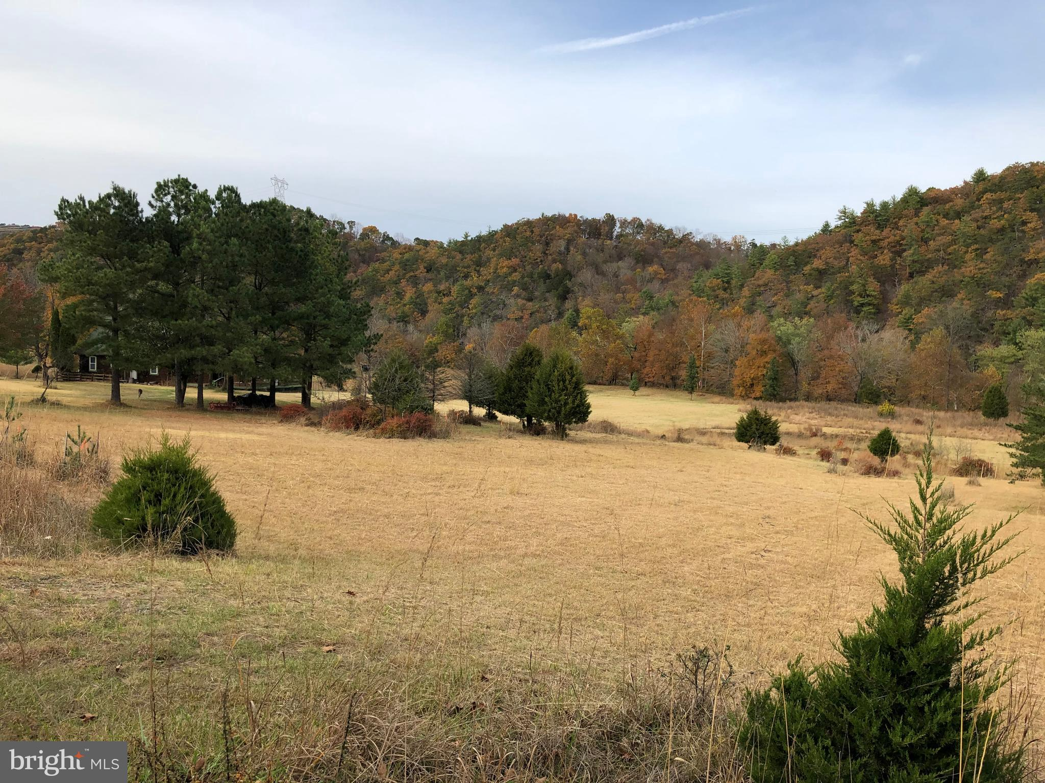 RIVER BEND DRIVE, BLOOMERY, WV 26817