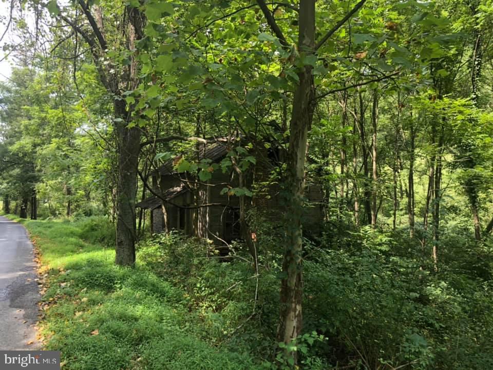 0 Sandy Hollow Road, Shermans Dale, PA 17090