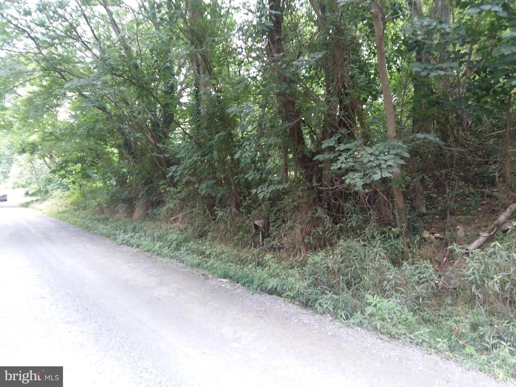 RR 662 Little Long Mountain E, Huntly, VA 22640