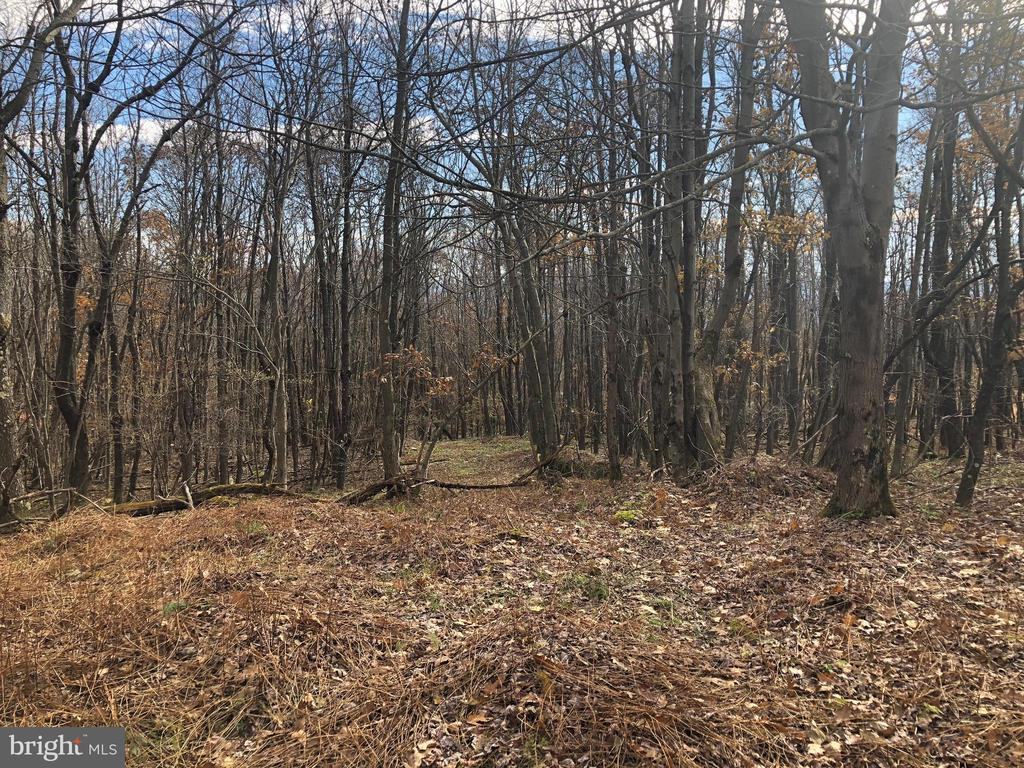 Lot 164 Shawnee View Road, Central City, PA 15926