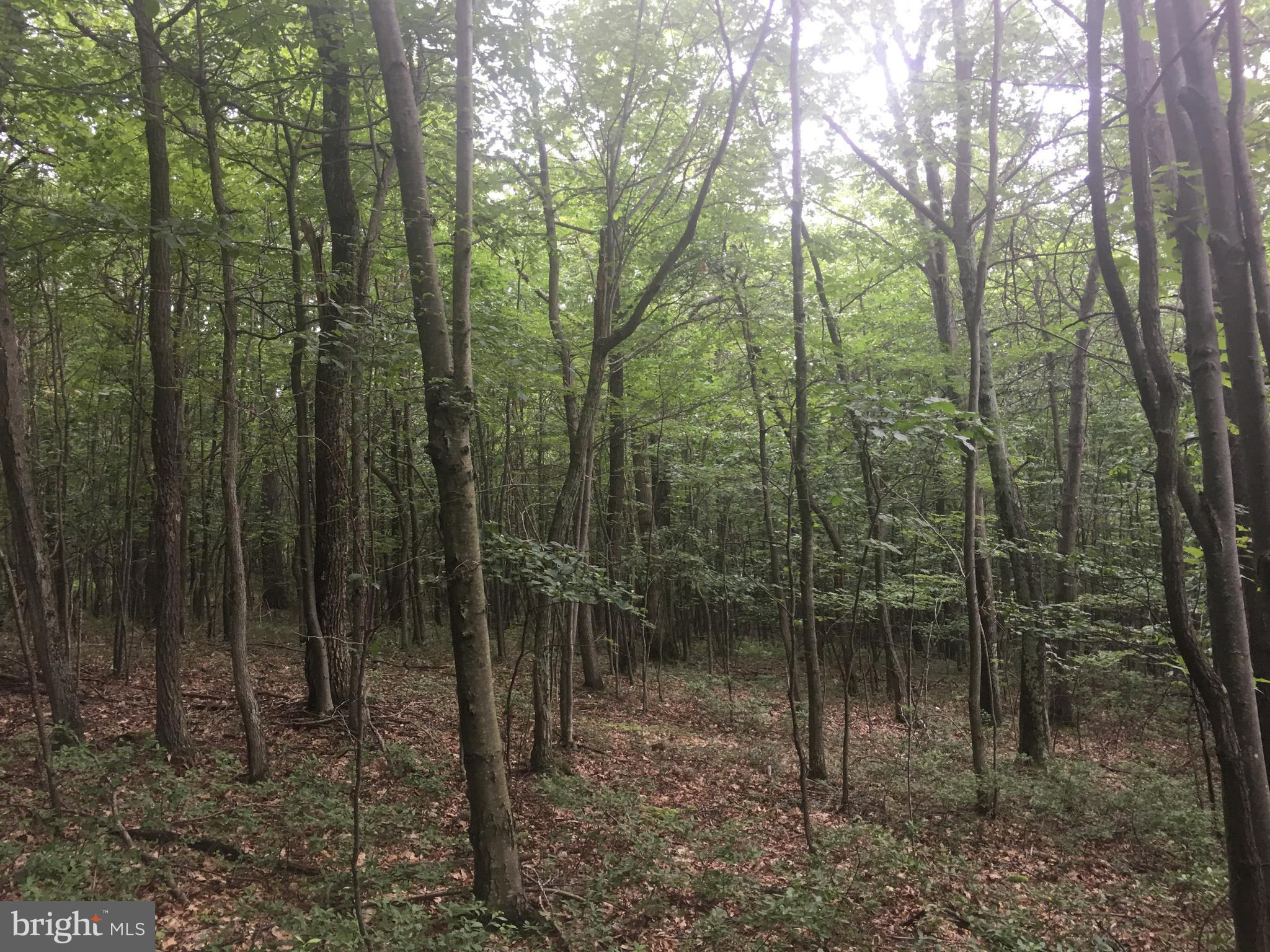 Lot 10 Sherman Valley Road, Hopewell, PA 16650