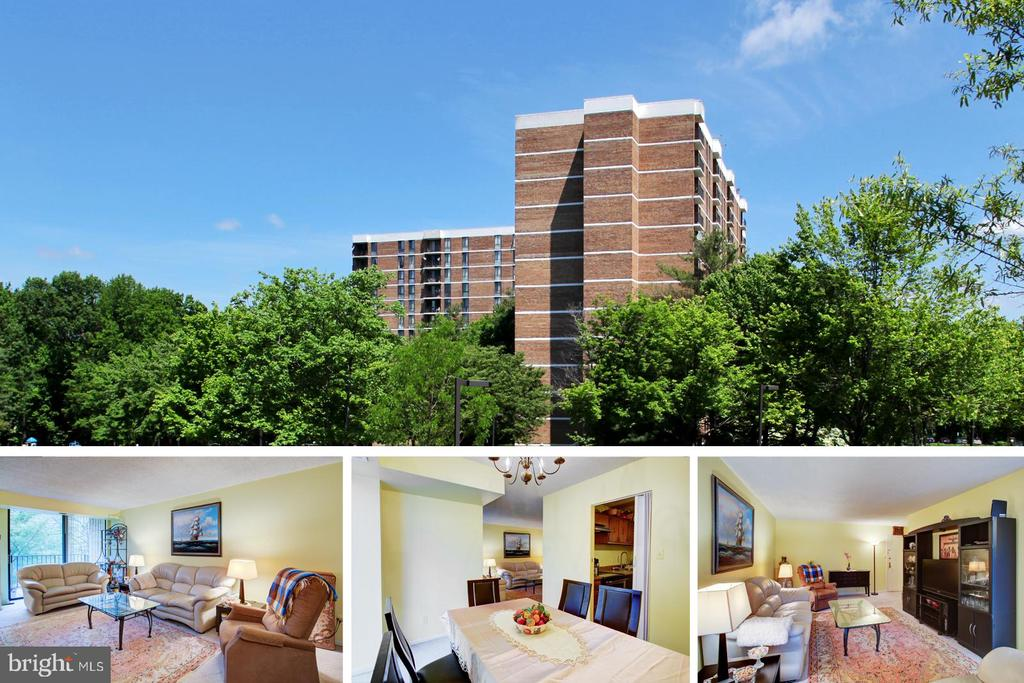 2300 Pimmit Dr #413, Falls Church, VA 22043