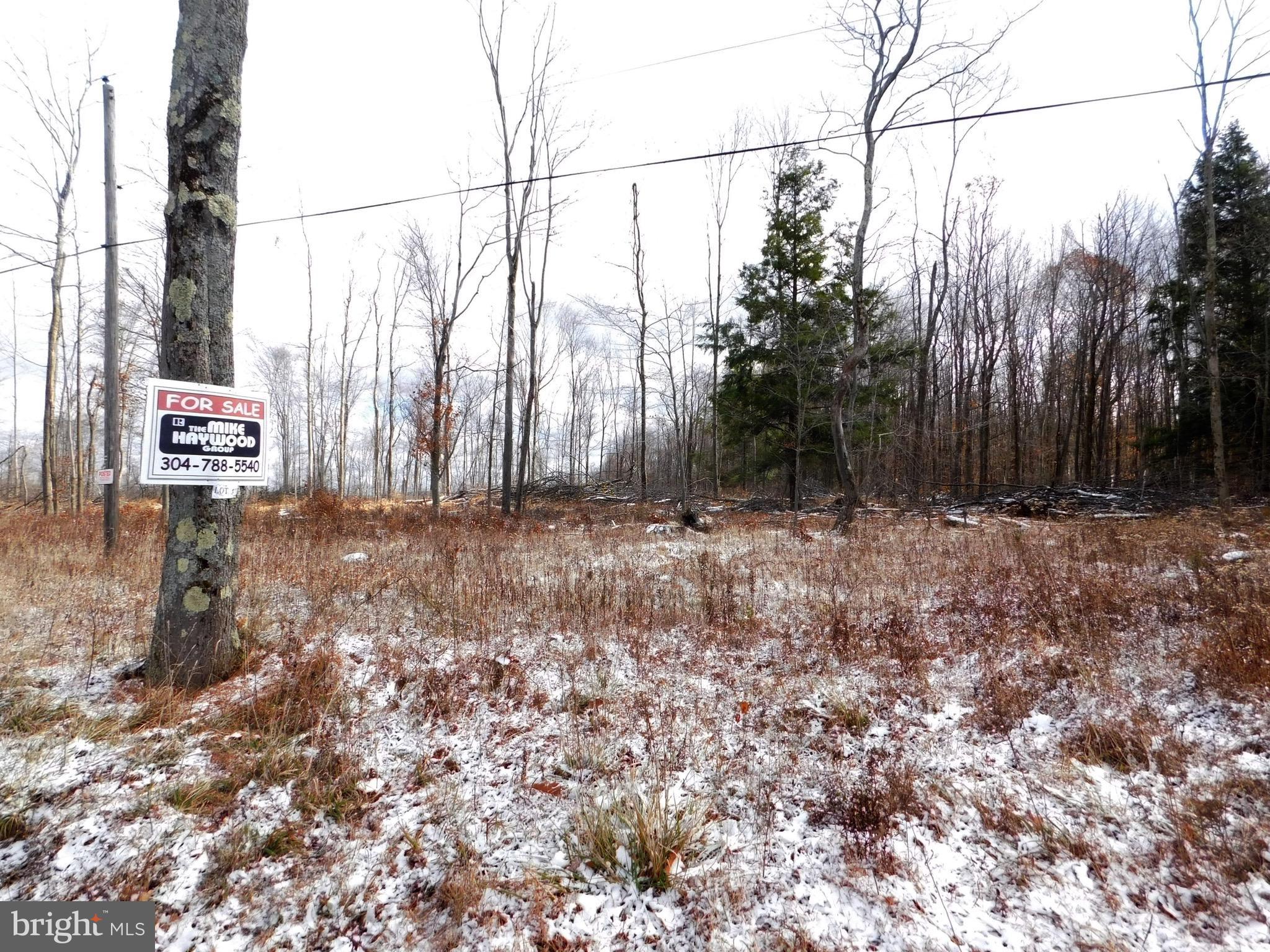 Cherry Ridge Road (Lot 3), Mount Storm, WV 26739