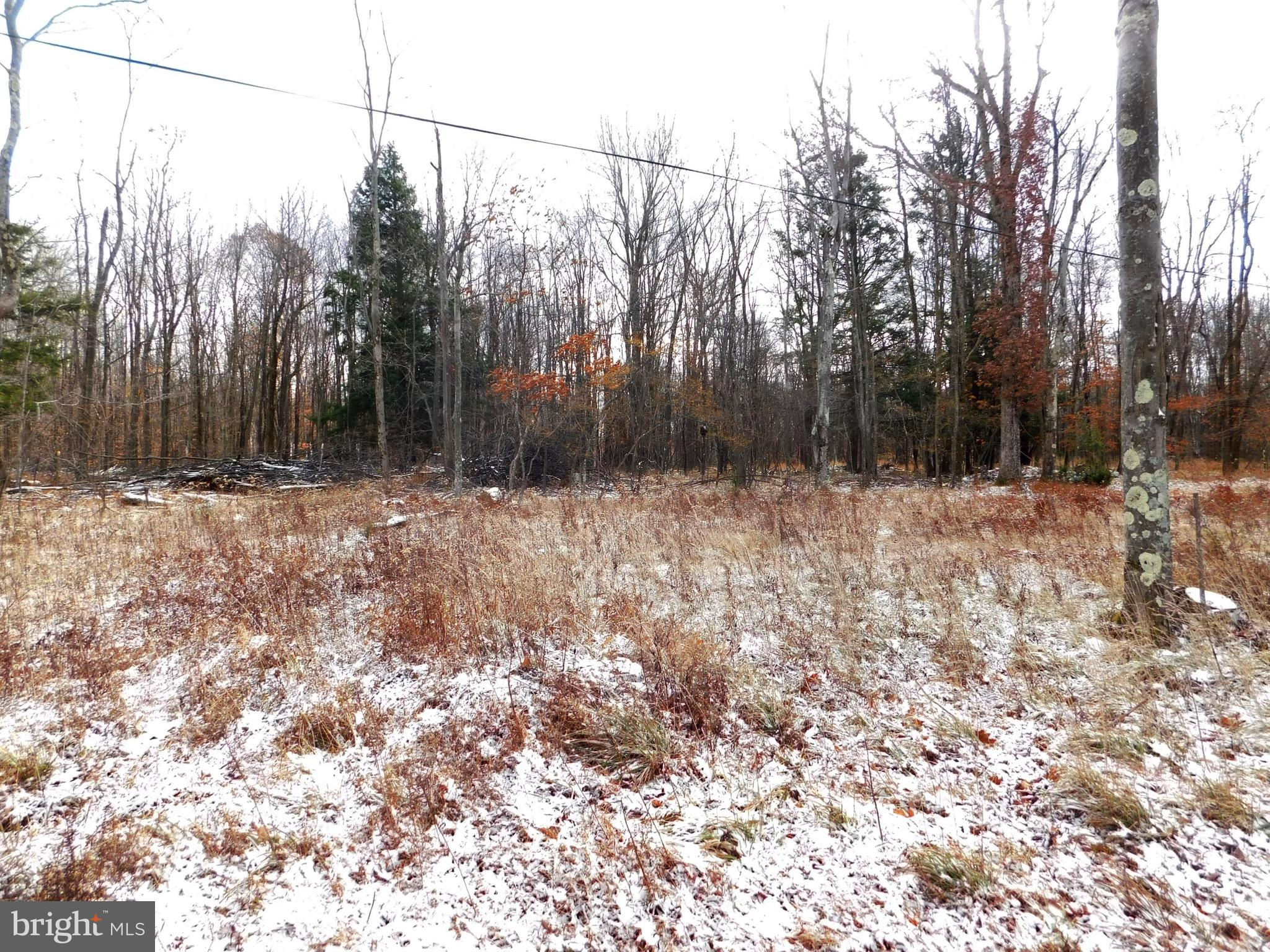 Cherry Ridge Road (Lot 4), Mount Storm, WV 26739