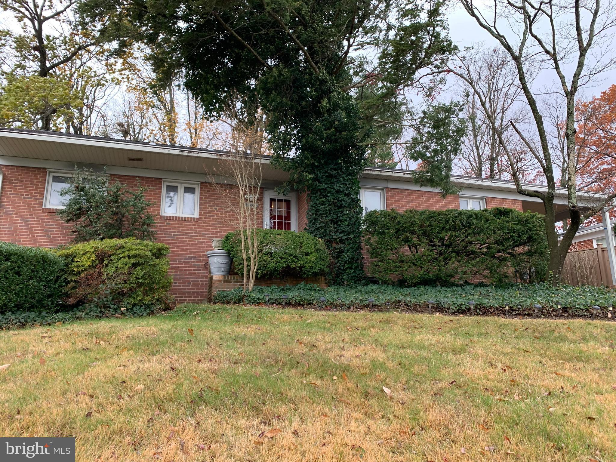 10204 GREEN FOREST DRIVE, SILVER SPRING, MD 20903