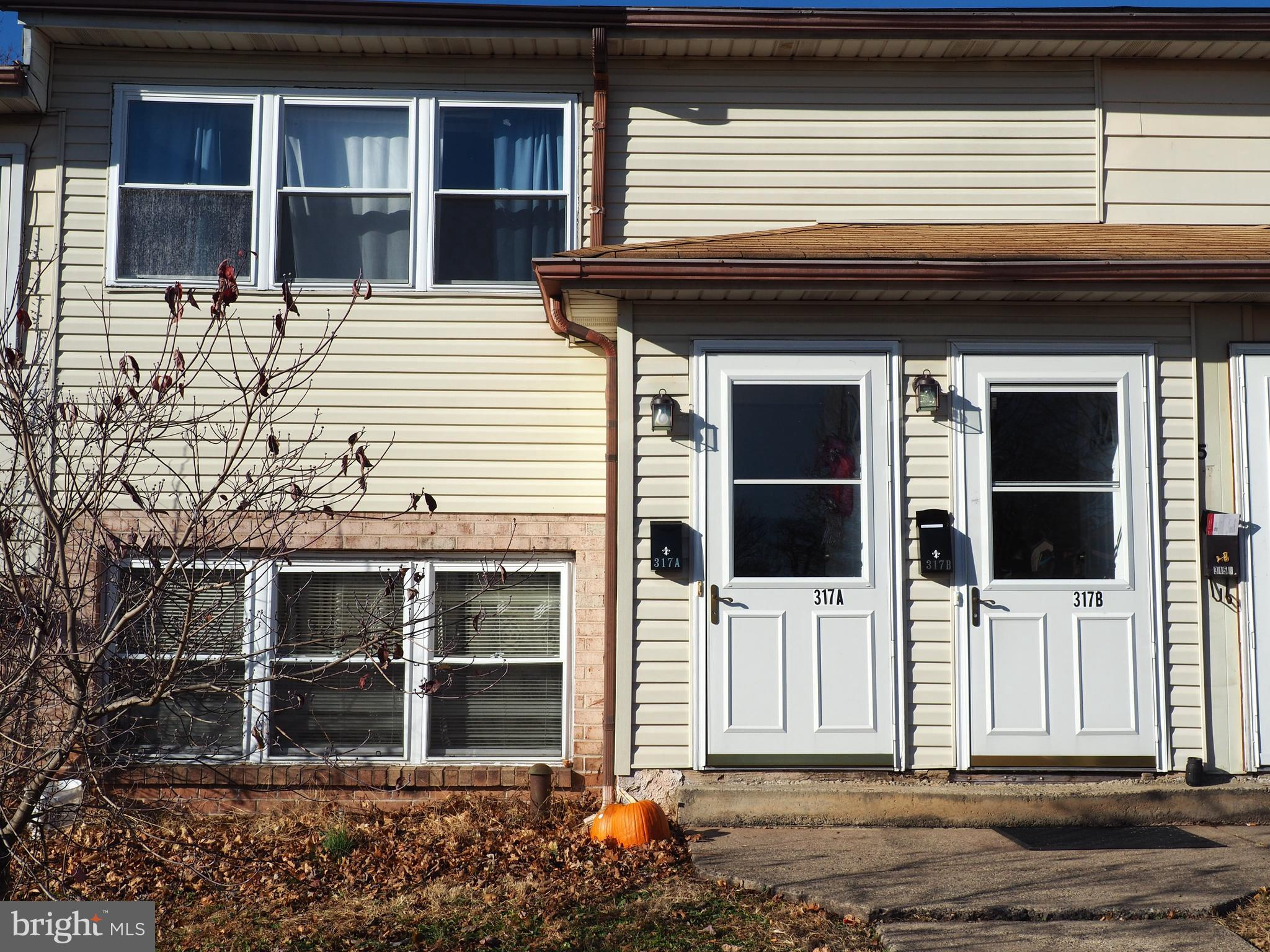 317 Unit A and B FORGE ROAD, EAST GREENVILLE, PA 18041