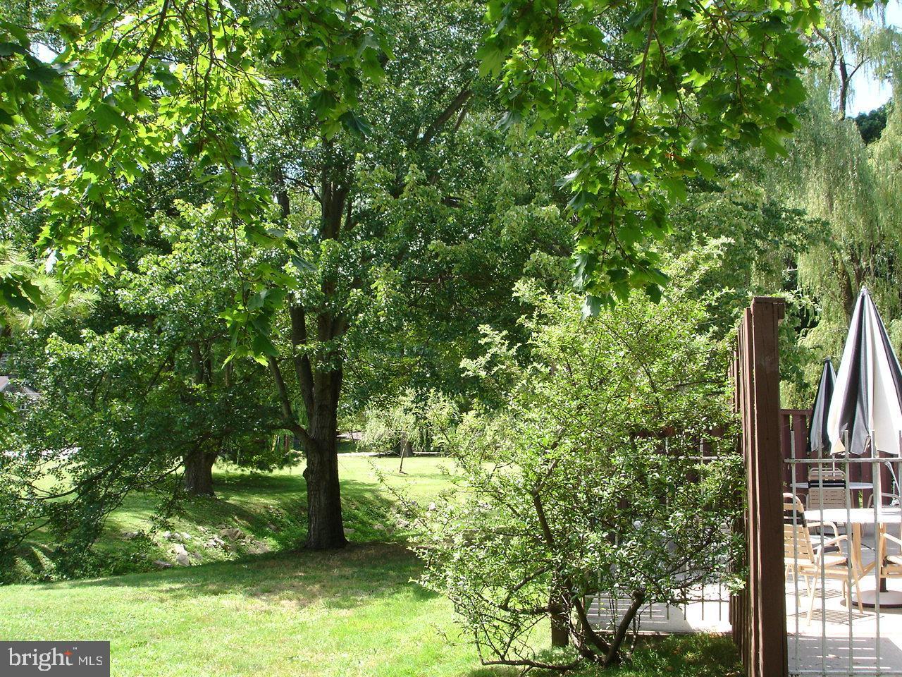 1219 W Wynnewood Road UNIT 217 Wynnewood , PA 19096
