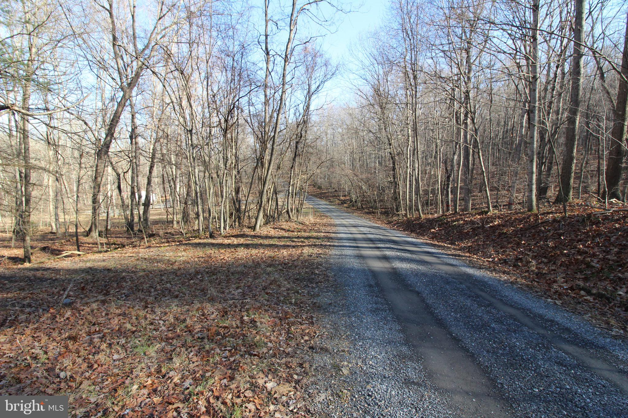 Lot C-54 Trout Stream Rd, Lost River, WV 26810