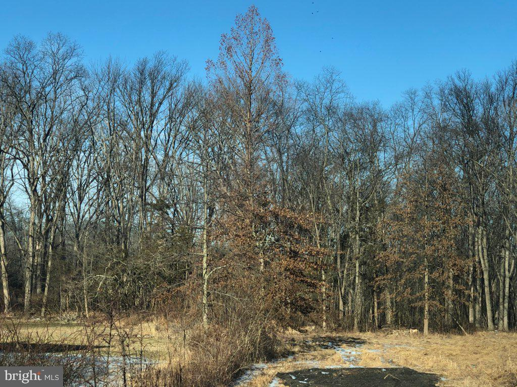 1030 (Lot Brinckman Road Pennsburg, PA 18073
